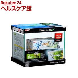 グラステリア300 セット(1セット)【グラステリア】