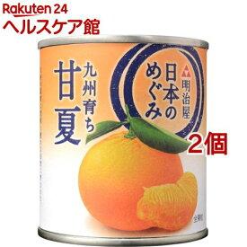 日本のめぐみ 九州育ち 甘夏(210g*2コセット)