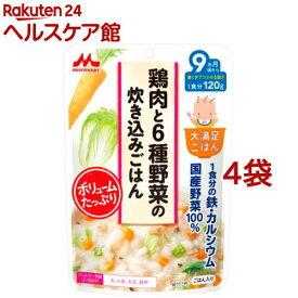 大満足ごはん 鶏肉と6種野菜の炊き込みご飯 G4(120g*4コセット)【more20】【大満足ごはん】
