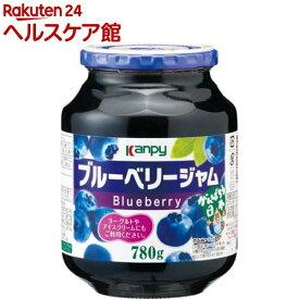 Kanpy(カンピー) ブルーベリージャム(780g)【more20】【Kanpy(カンピー)】