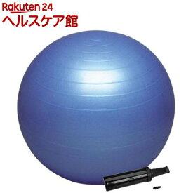 バランスボール セイフティー ポンプ付き DB55P(55cm)【ハタ(HATA)】