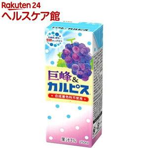 巨峰&カルピス(250ml*24本入)【カルピス】
