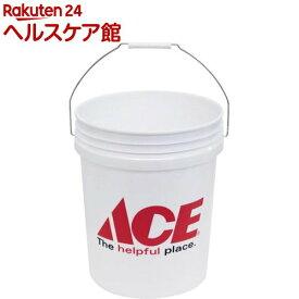 ACE ペール缶 5ガロン(1個)【ターナー】