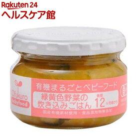 緑黄色野菜の炊き込みごはん(100g)【有機まるごとベビーフード】