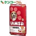 アイムス 成犬用 健康維持用 ラム&ライス 小粒 12kg[ドッグドライ 成犬 アダルト ラム]【送料無料】