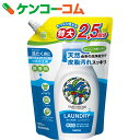 ヤシノミ洗たく用洗剤 コンパクトタイプ つめかえ用 特大 900ml