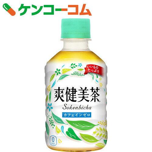 爽健美茶 280ml×24本