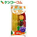 チューチューキャンディー フルーツ果汁100% 10本×15袋【送料無料】