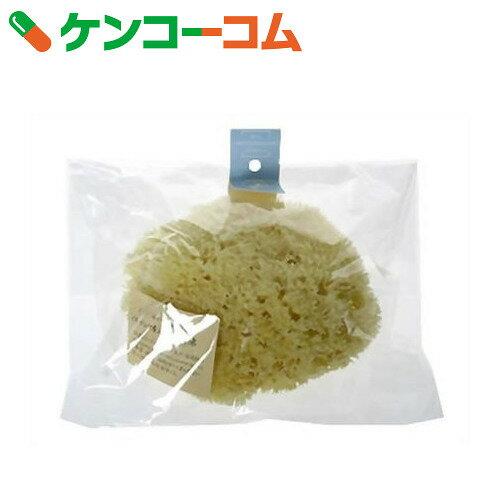 ナチュラルピュアスポンジ ギリシャ産海綿 XL【送料無料】