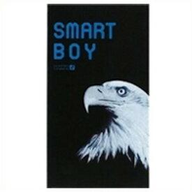 【ゆうパケット配送対象】オカモトスマートボーイ(SMART BOY)スーパーフィット12個入り【MK】 コンドーム 避妊具 避妊(ポスト投函 追跡ありメール便)