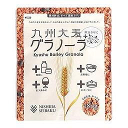 西田精製麥九州大麥guranora黑豆黄豆粉180g