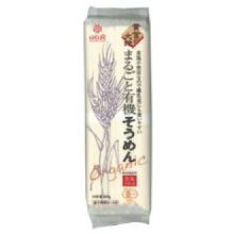 ▼P up to 36 times & coupon festival! Earth entirely organic somen 300 g somen salt nonuse dietary fiber dried noodles of ▼ はくばく gold are organic until 8/10 1:59