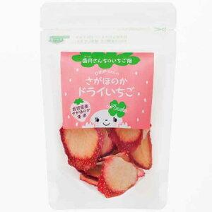 さがほのか ドライいちご 香月農園 15g ドライフルーツ いちご 【送料1通6袋まで220円】