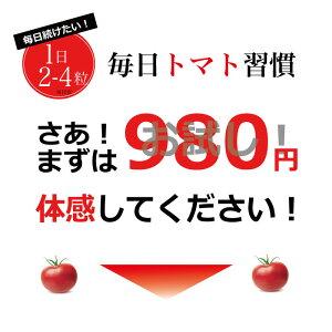 リコピンたっぷりのトマト、フォルスコリダイエット