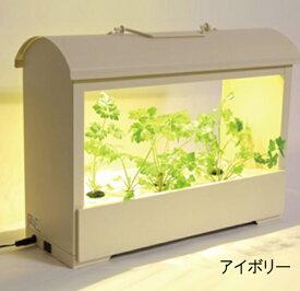 (クーポンつき)灯菜【Akarina05/LED水耕栽培キット】アカリナ05サラダ菜種子セット付属 屋内野菜栽培オリンピア照明インテリアとしても人気室内で野菜を育てる簡単 家庭用