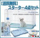 【送料無料】 IINA(イーナ) スターター4点セット(ブルー)