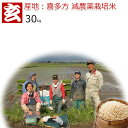 玄米 30kg 送料無料 減農薬 コシヒカリ 福島県会津喜多方産 特別栽培認証