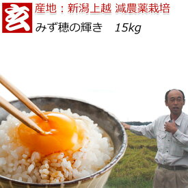 減農薬 玄米 15kg 送料無料 特別栽培認証 新潟産 2等米 みずほの輝き 農薬5割減 産年:令和元年 生産者:辻勉氏