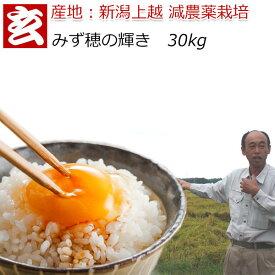 減農薬 玄米 30kg 送料無料 特別栽培認証 新潟産 2等米 みずほの輝き 農薬5割減 産年:令和元年 生産者:辻勉氏