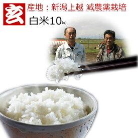 減農薬 白米 10kg 送料無料 特別栽培認証 新潟産 2等米 みずほの輝き 農薬5割減 産年:令和元年 生産者:辻勉氏
