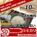 新米 お米 10kg 送料無料 新米29年産 神戸産 コシヒカリ 減農薬 玄米 10kg 送料無料 特別栽培米認証 生産農家限定米【…
