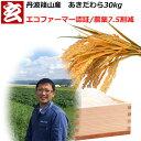 新米 農薬7.5割減 1等米 あきだわら玄米 30kg 送料無料 産年:令和2年 産地:丹波篠山産 生産者:田渕信也 ※精米選べます