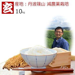 新米 令和元年 玄米 10kg 送料無料 コシヒカリ 農薬70%削減 丹波篠山産 減農薬 こしひかり 精米方法選べます