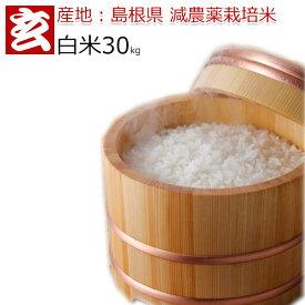 新米 令和元年 30kg 送料無料島根県産 つや姫 農薬5割減 白米 減農薬 特別栽培認証