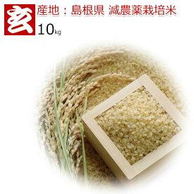 玄米 10kg 送料無料 島根県産 つや姫 減農薬 特別栽培認証