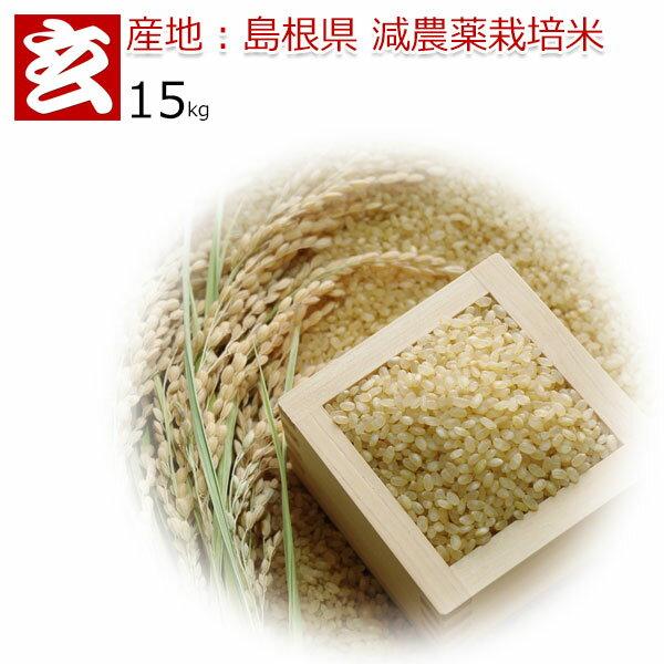 玄米 15kg 送料無料 島根県産 つや姫 減農薬 特別栽培認証