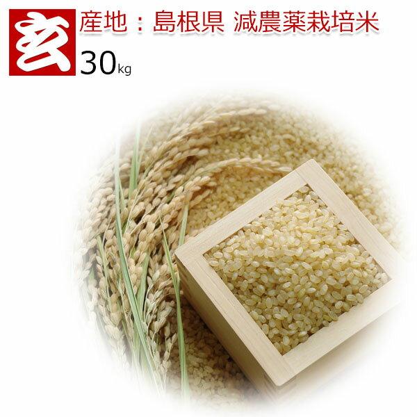 玄米 30kg 送料無料 島根県産 つや姫 減農薬 特別栽培認証