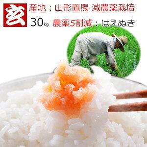 玄米 30kg 送料無料 農薬5割減 1等米 はえぬき 減農薬米 特別栽培認証 産地:山形県置賜産 生産者:小林 亮