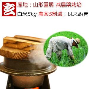白米 5kg 送料無料 農薬5割減 1等米 はえぬき 減農薬米 特別栽培認証 産地:山形県置賜産 生産者:小林 亮