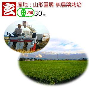 新米 令和元年 無農薬 玄米 30kg 送料無料  JAS有機認証 コシヒカリ 農薬不使用 山形県産 置賜地区限定 生産者:小林 亮