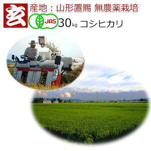 無農薬 玄米 30kg 送料無料  JAS有機認証 1等米 コシヒカリ 農薬不使用 山形県産 置賜地区限定産年:令和元年 生産者:小林 亮