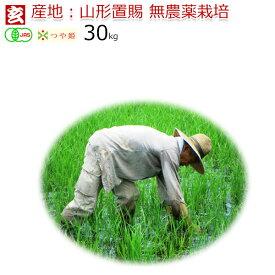 無農薬 玄米 30kg 送料無料 JAS有機認証 1等米 無農薬つや姫 山形県産 置賜地区限定産年:令和2年 生産者:小林 亮