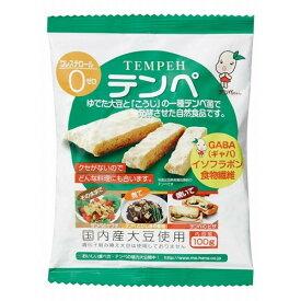 【まとめ買い価格】テンペ(レトルト)100g×10袋セット【マルシン食品】