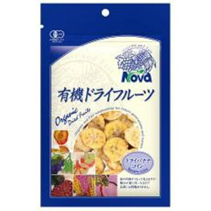 【お買上特典】ノヴァ 有機ドライフルーツ・バナナコイン 70g ×30個セット【有機JAS認定品】