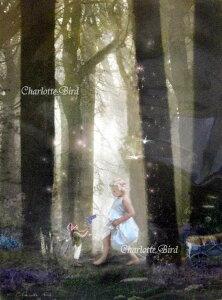 天使 妖精 絵画 チャンス エンカウンター(偶然の出会い)フォトグラフ フェアリー エンジェル アート インテリア ヴィクトリア Charlotte Bird シャーロットバード イギリス 英国
