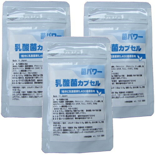乳酸菌 サプリ 菌パワー 16兆2千億個の乳酸菌!×3個お得セット 90種類の酵素プラス 乳酸菌 EC-12 乳酸菌サプリメント 乳酸菌カプセル 送料無料