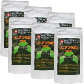 イチョウ葉エキス+DHA リニアフラボン 90粒×6個お得セット いちょう葉 +DHA スイス リニア社 イチョウ葉エキス120mg イチョウ葉 フラボノイド サプリメント