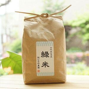 自然栽培古代米もち米 緑米/450g【結び自然農園】