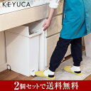 KEYUCA(ケユカ) 送料無料 arrots ダストボックス ごみ箱 ゴミ箱 2個セット[ごみ箱 ゴミ箱 ダストボックス ふた付き フ…