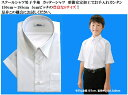 L.LORLAR スクールシャツ 男子 半袖 学生服 形態安定加工