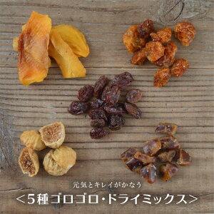 ドライフルーツ 砂糖不使用 無添加 5種 ゴロゴロ ドライミックス 200g 送料無料 ノンオイル