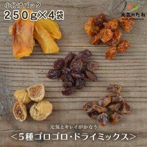 小分け 4×250g ドライフルーツ 砂糖不使用 無添加 5種 ゴロゴロ ドライミックス 送料無料 ノンオイル