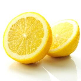 レモン 国産 訳あり れもん 5kg