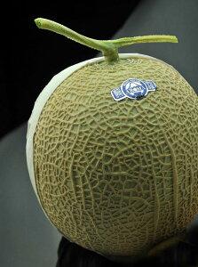 果物 ギフト 静岡県産 高級 メロン 日本が誇る 静岡 マスクメロン 大玉 1玉 送料無料