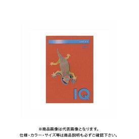 伊東屋 バイオトップカラーA4(500枚入) BT519 ブリックレッド