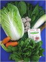■送料無料■【吉備高原農家の野菜】鍋用野菜セット(3〜5人前) 【税込】2980円